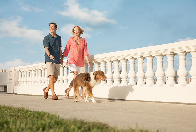 Couple walking dog on Bayshore Blvd
